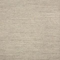 Sunbrella® Fabric 44285-0001 Action Ash