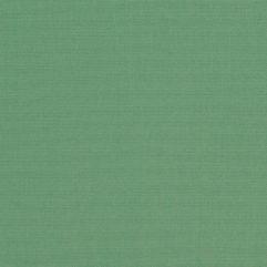 Sunbrella® Fabric 4688-0000 Basil (Marine/Awning)