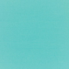 Sunbrella® Fabric 5416-0000 Canvas Aruba