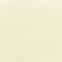 Sunbrella® Fabric 5404-0000 Canvas Natural (Furniture Grade)