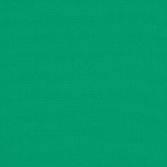 Sunbrella® Fabric 4600-0000 Erin Green (Marine/Awning)